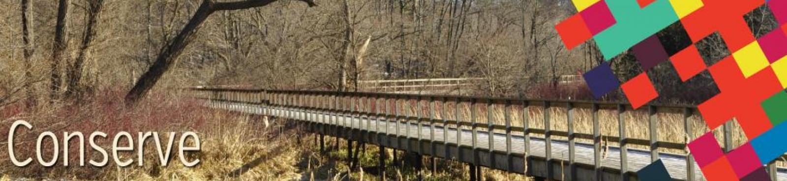 Conserve - Woods